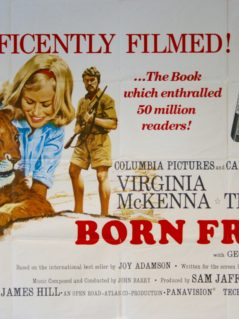 Born-Free-Movie-Poster