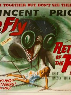 The-Fly-/-return-of-the-Fly-Movie-Poster
