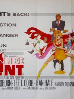 In-Like-Flint-Movie-Poster